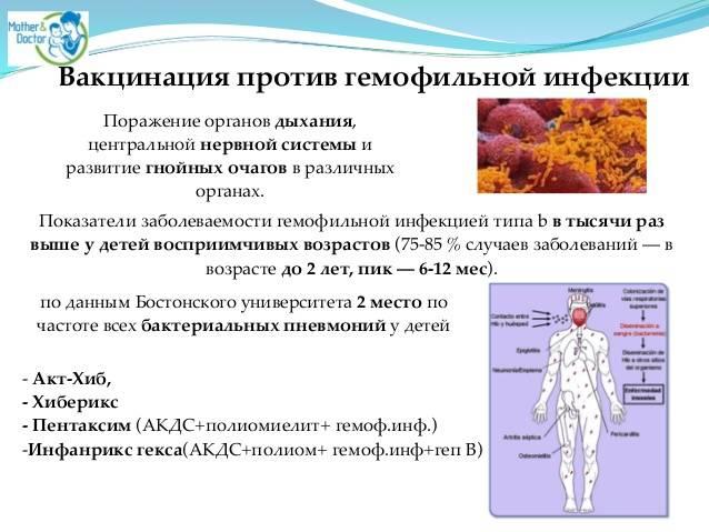 Сделать прививку от хиб инфекции (гемофильная инфекция типа b) в москве