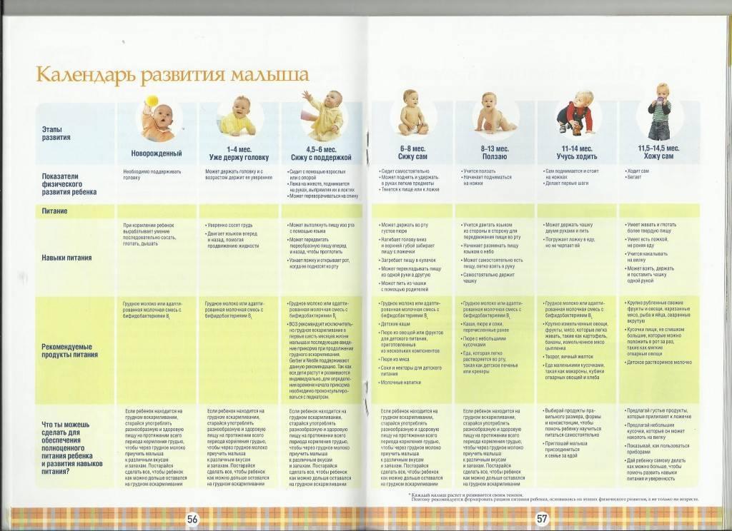 Развитие ребенка в 4 месяца: что умеет ваш малыш