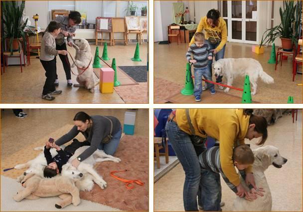 Дельфинотерапия для детей с аутизмом в сети центров немо