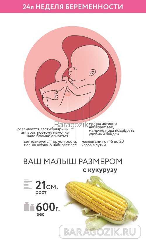 37 неделя беременности