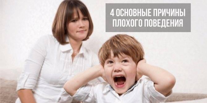 Ребенку 4 года не слушается что делать: советы психолога, комаровский