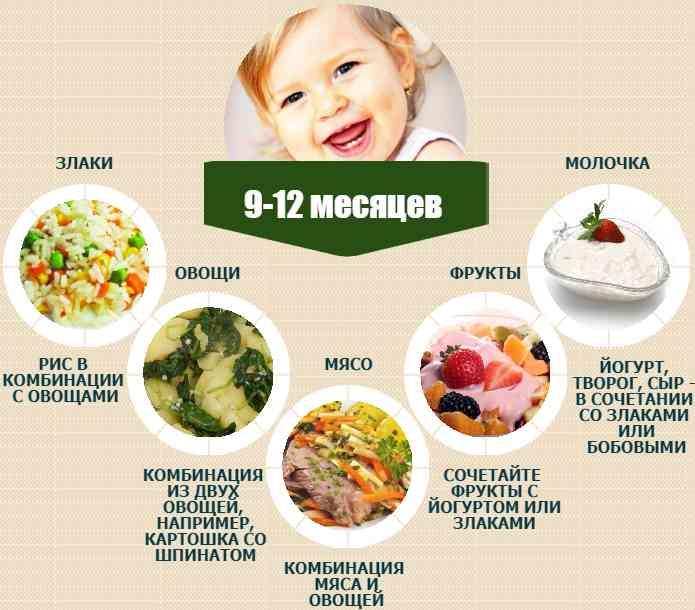 Меню ребенка в 9 месяцев на каждый день недели с рецептами - топотушки
