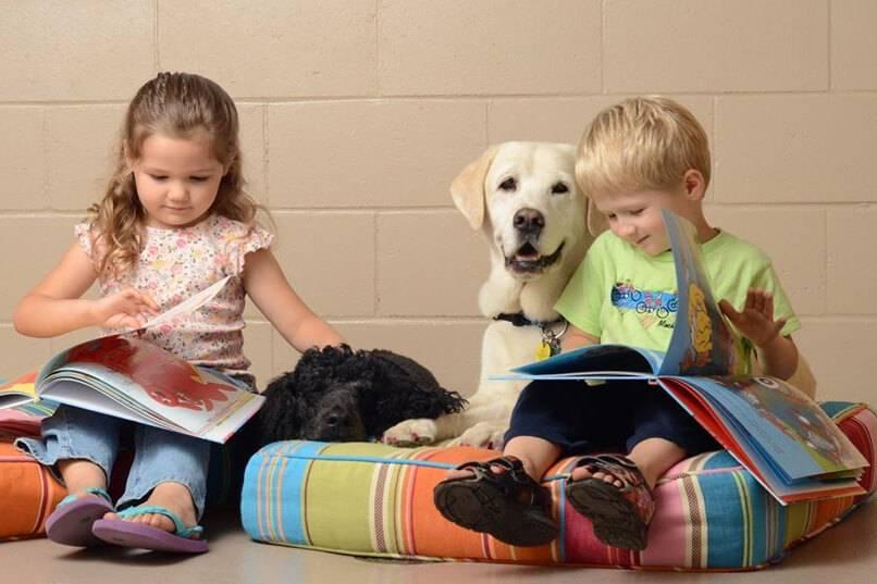 Анималотерапия. домашние животные - лекарство для наших детей