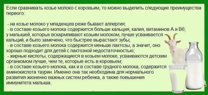 Комаровский рассказал, на каком молоке варить кашу детям ~ факультетские клиники иркутского государственного медицинского университета