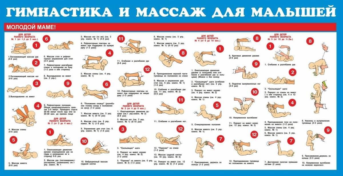 Гимнастика для ребенка в 4 месяца: какие упражнения делать грудничку для зарядки